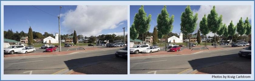 car park trees